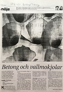 Borlänge tidning 2003